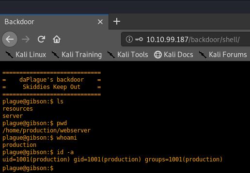 Screenshot showing the backdoor terminal we're given